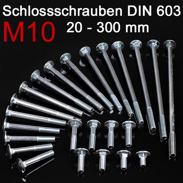 25 St/ück Schlossschrauben DIN 603 Falk-Schrauben Flachrundschraube Torbandschraube Schlossbolzen Trainerbolzen Vierkantansatzbolzen Edelstahl A2 V2A Nirosta M10 x 55//55 mm